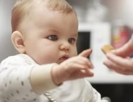 alimentacao_do_bebe